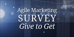 Agile Marketing Survey